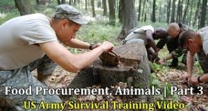 US-Army-Survival-Training-Video-Food-Procurement-Animals-Part-3